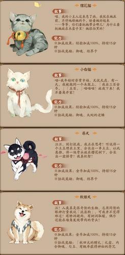阴阳师宠物后院怎么玩 阴阳师宠物后院玩法详解